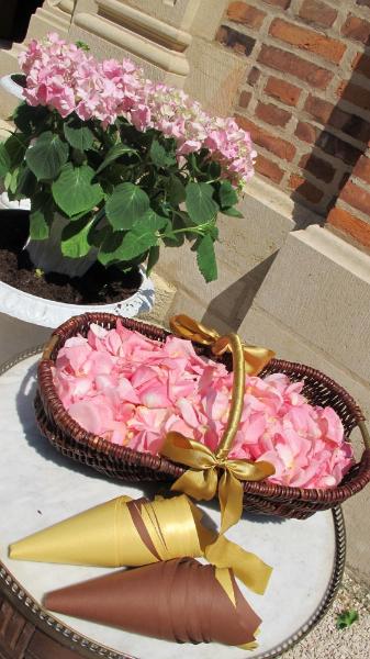 1205_ceremony-exit-rose-petals