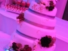 1207_myr_dinner_wedding-cake_ld